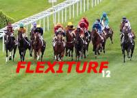 logo-flexiturf-3.jpg