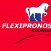 Sigle flexipronos