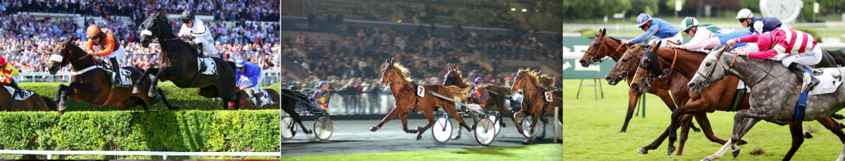 Bandeau trot galop obstacles